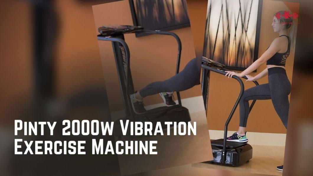 Pinty 2000w Whole Body Vibration Platform Exercise Machine Review