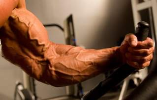 Increase vascularity by increasing muscle mass