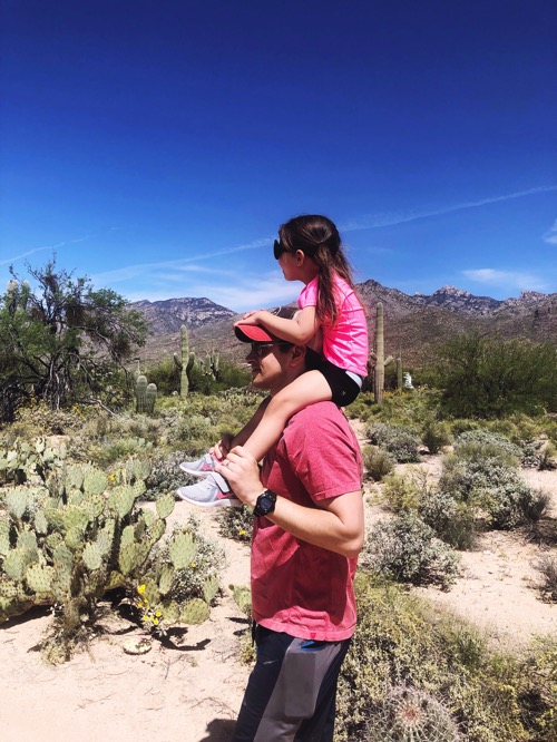 Sabino canyon walk