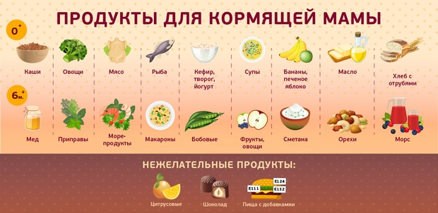 Здоровое питание эссе x