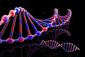 genetic profile