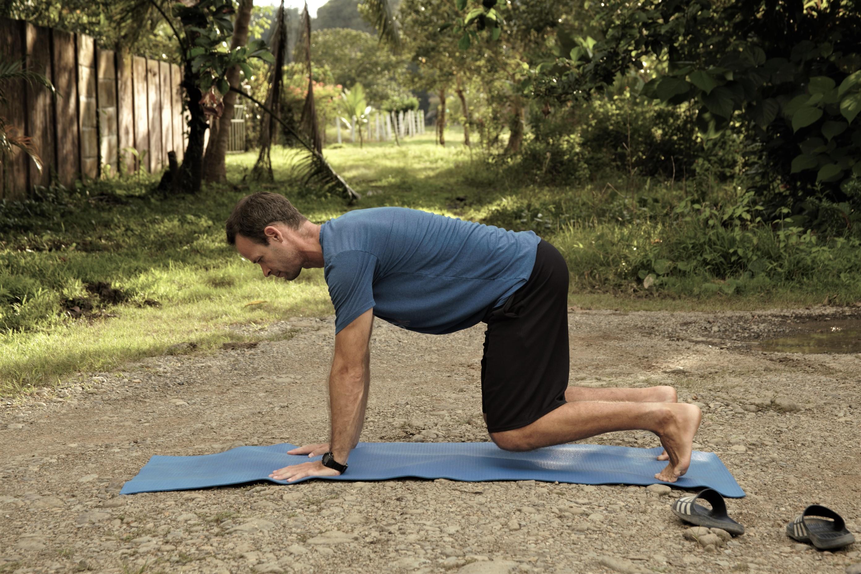 fitness vida plank on all 4s