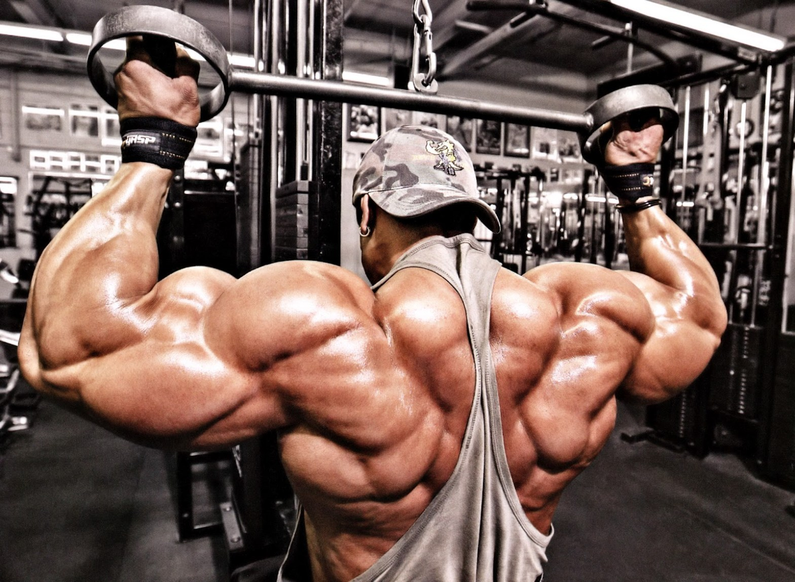 Best Top 8 Arms In Bodybuilding History Page 7 Of 8