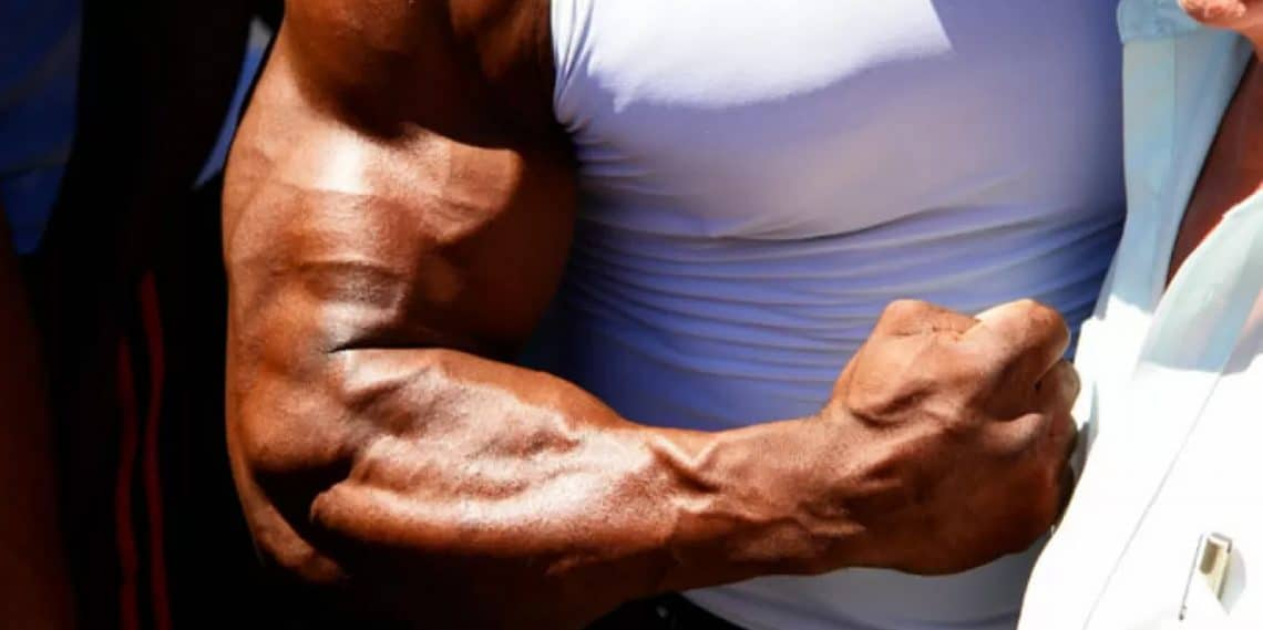 Coaching The Brachioradialis For Additional Arm Mass