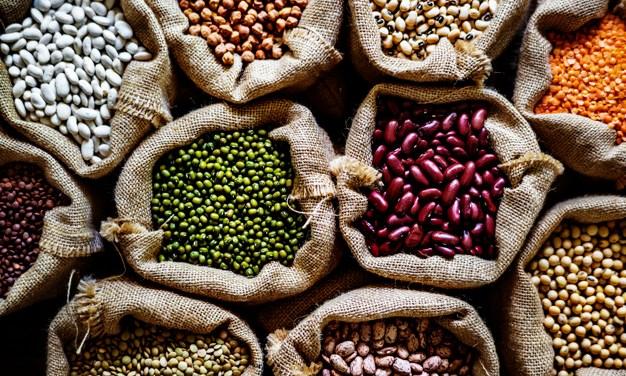 Importancia de las Proteínas vegetales