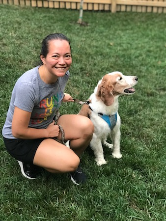 Crouching next to my Welsh Springer Spaniel, Wallace, in his Stunt Puppy harness