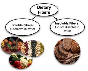dietary fiber types