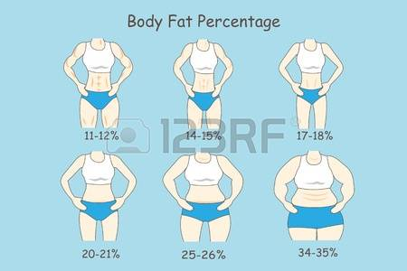 Body Fat Percentage Pictures