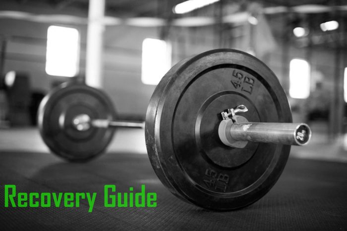 Recovery Guide