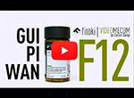 Videos de medicina china GUI PI WAN