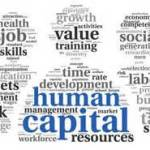 Physical Therapist Human Capital