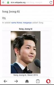 Buka wikipedia biar makin pintar. Pintar berhalusinasi.