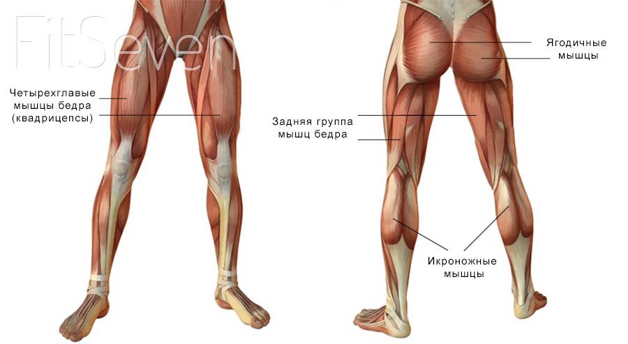 picioarele grele și partea inferioară a spatelui