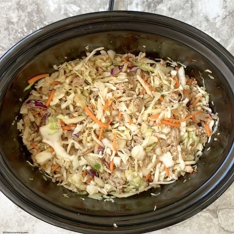 before pic of crack slaw in the slow cooker