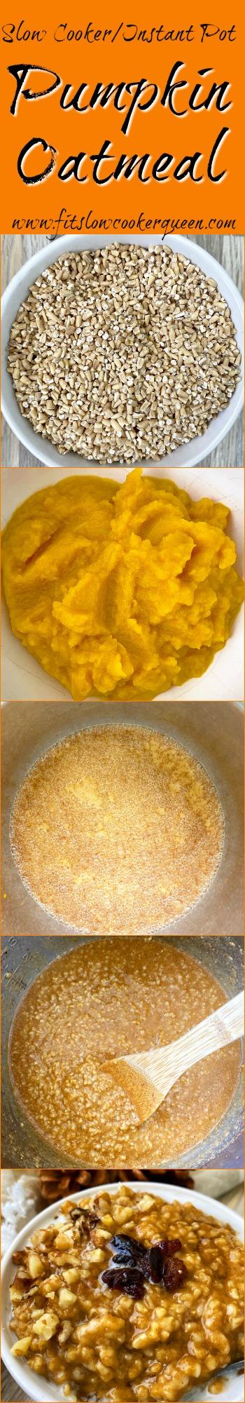another pinterest pin for Slow Cooker_Instant Pot Pumpkin Oatmeal (Vegan)
