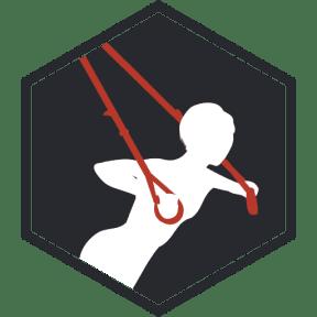 FTI-suspension-training
