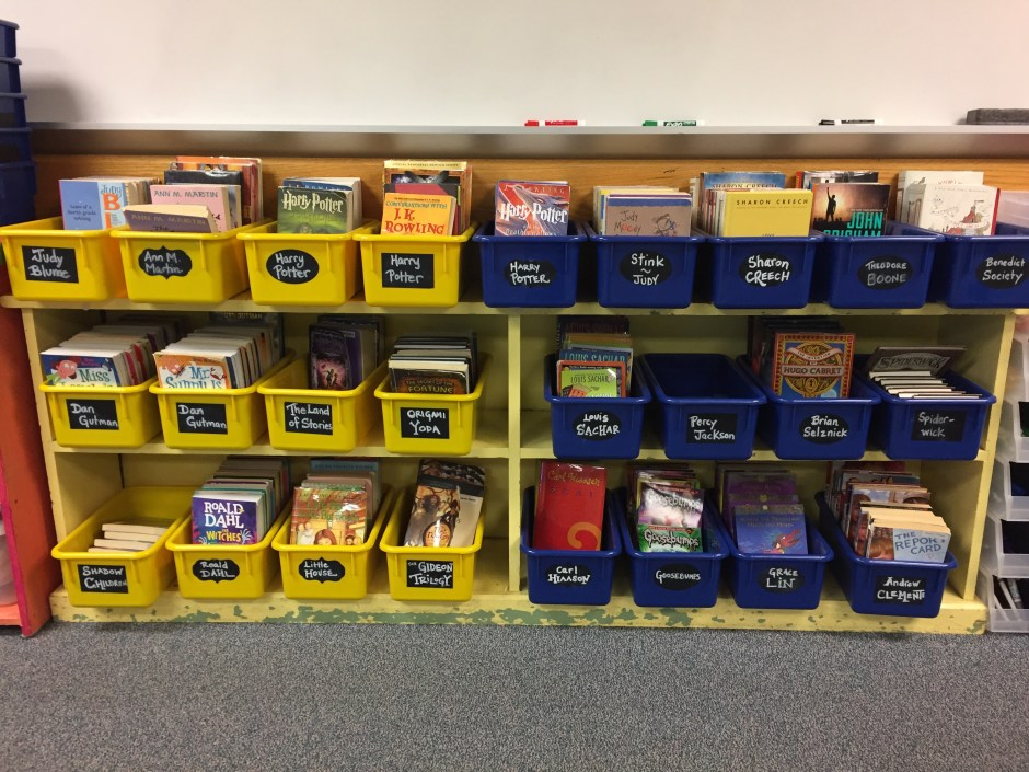 Organizing this classroom library makes for a great two-person job on your classroom jobs list.