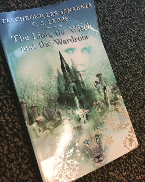 The Chronicles of Narnia are books like Harry Potter. Though they were written long before Harry Potter!