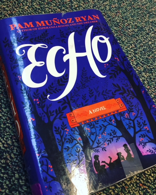 Echo is one of those books like Harry Potter. It won't let you go!