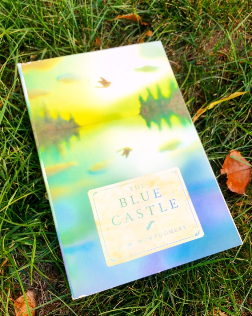 The Blue Castle is a stand alone book that fits beautifully with your 4th grade books.