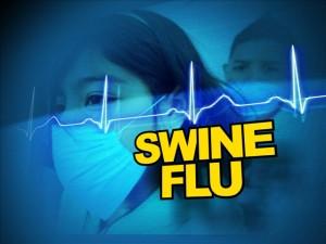 swine flu11