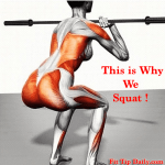 Different Types of Squats – Switch it Up For Amazing Legs
