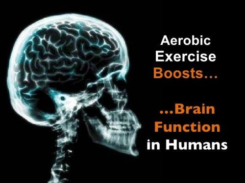 aerobic exercise and the brain