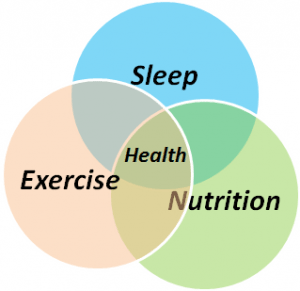 SEN_Sleep_Exercise_Nutrition_Health-300x291