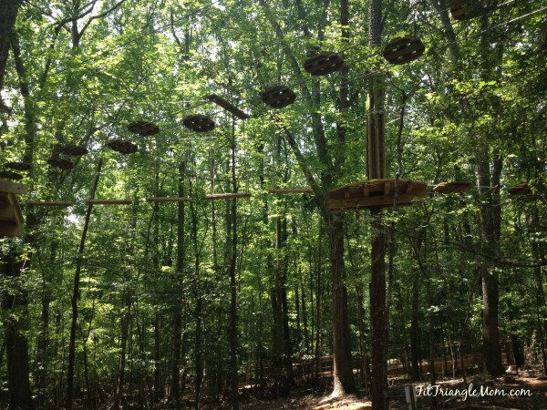 climbing high in the tree, obstacles and zip-lines. Go Ape has adventures for kids.
