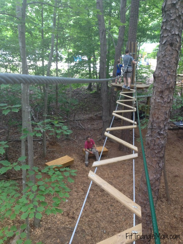 high in the trees at Go Ape adventure. My little wasn't scared on the rope course.