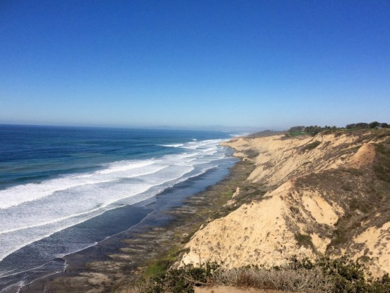 weekend guide to san diego torrey pines state park