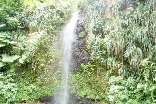 spencer ambrose st lucia waterfall fittwotravel.com