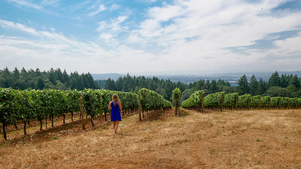 Oregon Wine Country Guide 8 Wineries To Visit In The