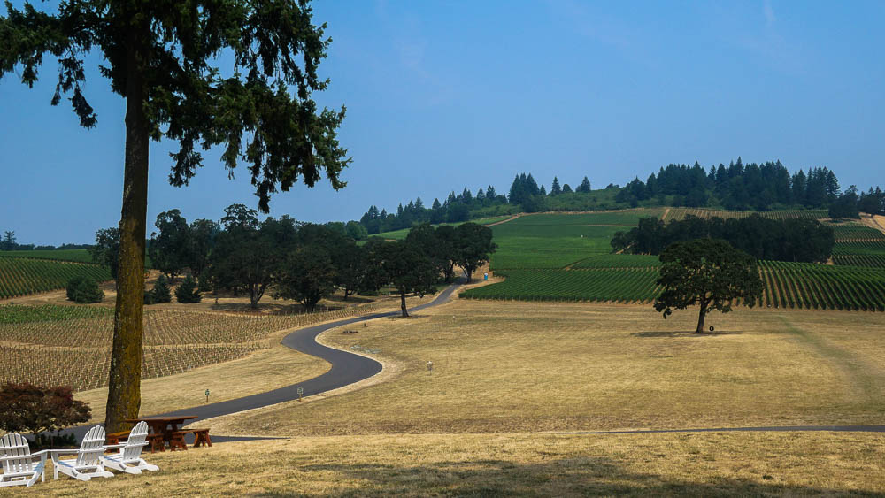 Oregon wine country guide 8 wineries to visit in the for Best time to visit wine country