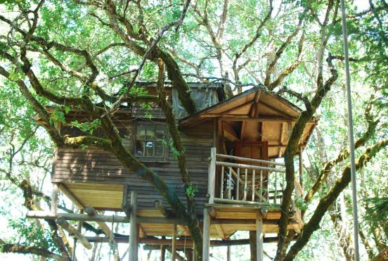 places to stay oregon treehouse