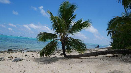 rarotonga beaches fittwotravel.com