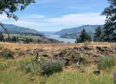 columbia gorge hikes catherine creek