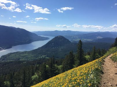 dog mountain washington hikes