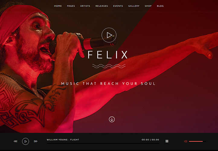 Felix WordPress Theme Desktop