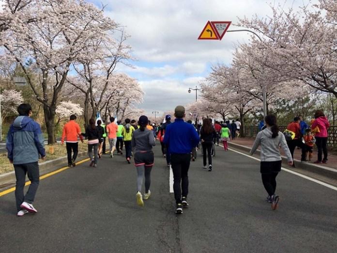 慶州 馬拉松的感動 Gyeongju