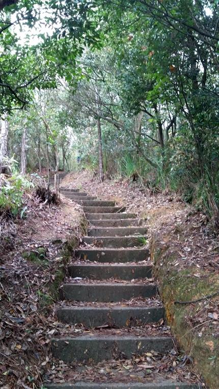 這些樓梯比較矮,非常易走