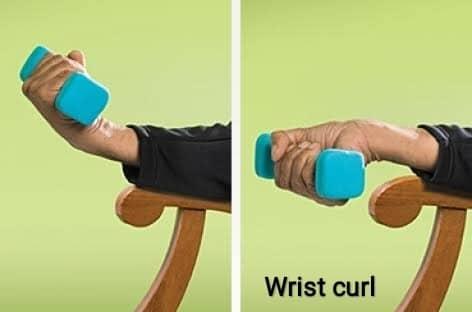 Wrist curl - FITZABOUT