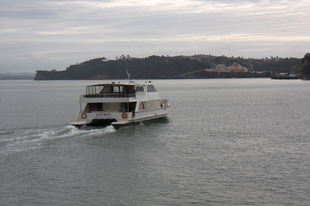 The Birkenhead Ferry