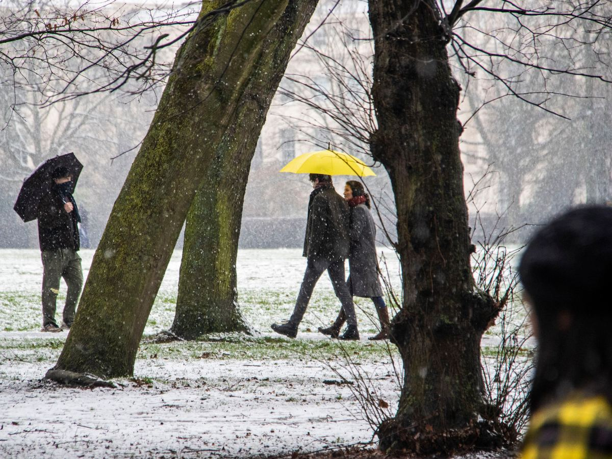 Walking in the park with a yellow umbrella.