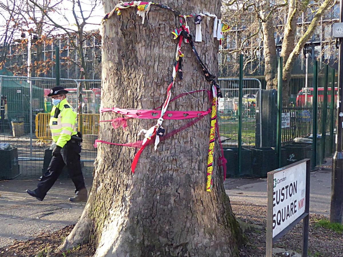 Ribbons around tree.