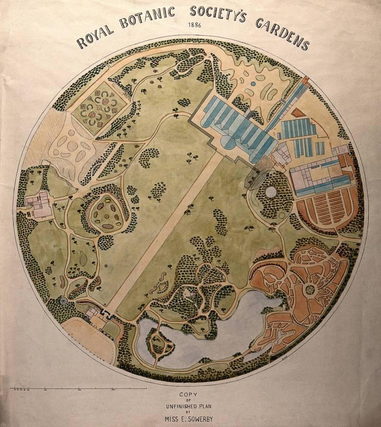 Drawing of Royal Botanic Society's Gardens, Regent's Park.