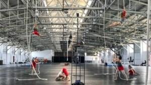 Acrobatic Conundrum at Toronto International VR FIlm Festival