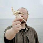 Clement Deneux - Missing Pictures Birds of Prey director headshot