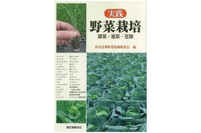 実践 野菜栽培