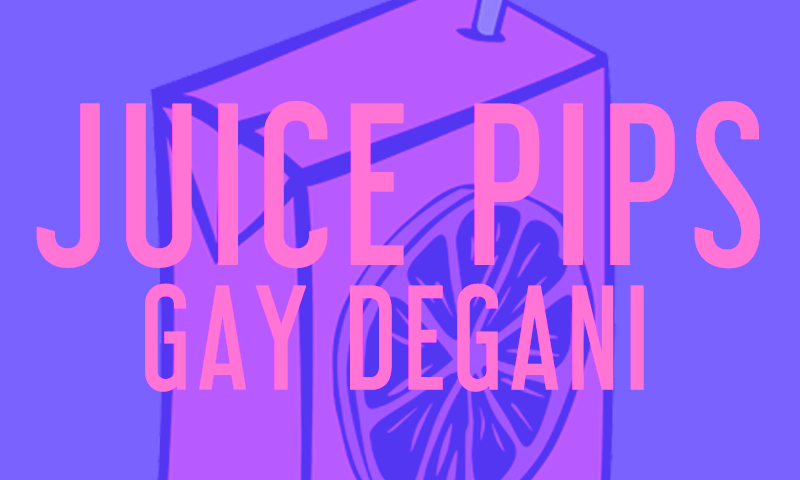Gay Degani